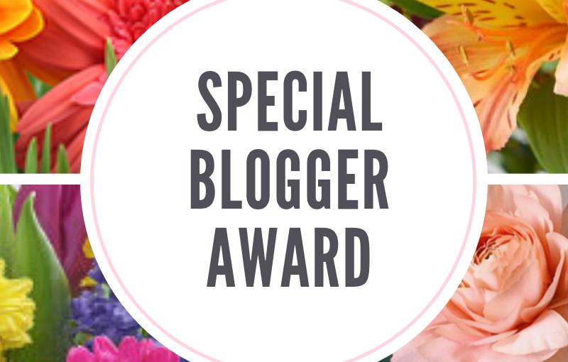 Special Blogger Award1