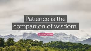 20. Patriot Alert 15: The Wisdom Of Patience With Processes Of Life – Achieving Enduring Results In Nigeria. Part I ofII